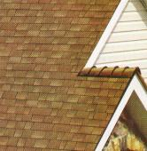 shingles on roof